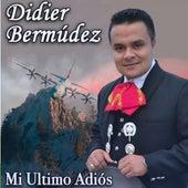 Mi Ultimo Adiós by Didier Bermudez