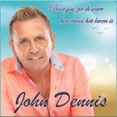 Door Jou Zie Ik Weer Hoe Mooi Het Leven is de John Dennis
