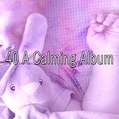 40 A Calming Album von Sleep Sounds of Nature