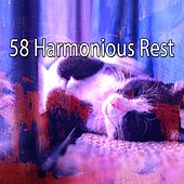 58 Harmonious Rest by Ocean Sounds Collection (1)