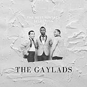 The Best Vintage Selection - The Gaylads de The Gaylads