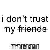 I Don't Trust My Friends (feat. Not a Robot) de TryHardNinja