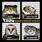 Nature's Greatest Mystery by The Four Owls