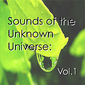 Sounds of the Unknown Universe: Vol.1 de Various Artists