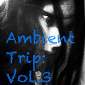 Ambient Trip: Vol.3 de Various Artists