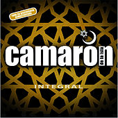 Integral by Various Artists