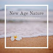 New Age Nature - Relaxing Healing Massage Music de soundscapes