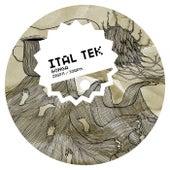 Gonga by iTAL tEK