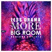 Less Drama More Big Room, Vol. 1 de Various Artists
