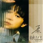 Rou Ruan von Qing-Feng Wu