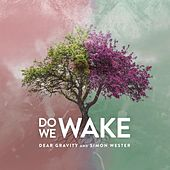 Do We Wake by Dear Gravity