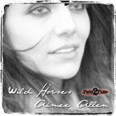 Wild Horses by Aimee Allen