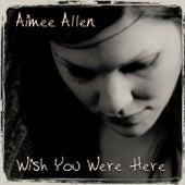 Wish You Were Here de Aimee Allen