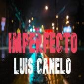 Imperfecto (Remastered) von Luis Canelo