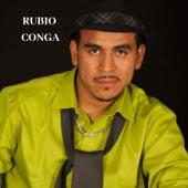 Me Niegas Tanto Amor de Rubio Conga