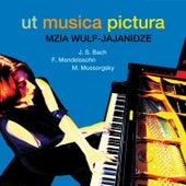 Ut musica pictura von Mzia Wulf-Jajanidze