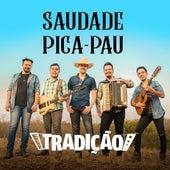 Saudade Pica-Pau de Grupo Tradição