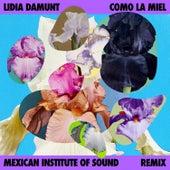 Como la Miel (Remix) by Lidia Damunt