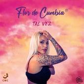 Tal Vez (Radio Edit) by Flor de Cumbia fc