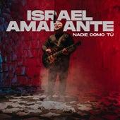 Nadie Como Tú by Israel Amarante