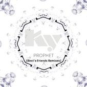 Prophet (Best's Friends Remixes) by Studnitzky