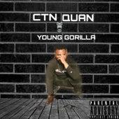 Young Gorilla de CTN Quan
