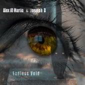 Endless Void by Joseph B Alex JB Martin
