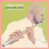 Ragas from Lahore: Improvisations with Jaubi by Tenderlonious
