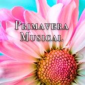 Primavera Musical de Various Artists
