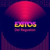 Exitos Del Regueton de Various Artists
