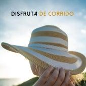 Disfruta de corrido by Various Artists