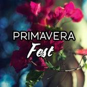 Primavera Fest by Various Artists