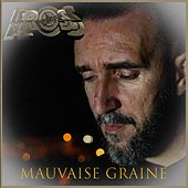MAUVAISE GRAINE by Ros