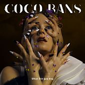 What Did You Say by Coco Bans
