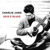 Sein's Blues di Charlie Jung