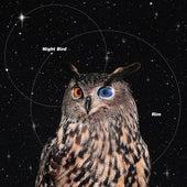 Night Bird de Rim