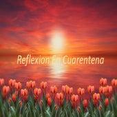 Reflexiones para la Cuarentena by Para Sanar