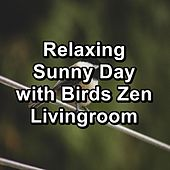 Relaxing Sunny Day with Birds Zen Livingroom by Nature Sounds (1)