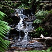 Relaxing Mountain Stream by Brother Nature