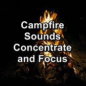 Campfire Sounds Concentrate and Focus von Yoga Music