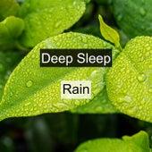 Deep Sleep Rain by Rain Sounds (2)
