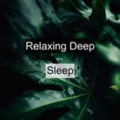 Relaxing Deep Sleep by Sleep Sounds of Nature