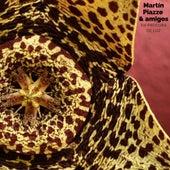 Martin Piazze & Amigos (En Procura de Luz) (Cover) by Martin Piazze