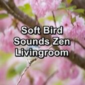 Soft Bird Sounds Zen Livingroom von Yoga Flow