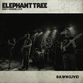 Dawn (Live) by Elephant Tree
