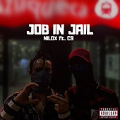 JOB IN JAIL by Nilox
