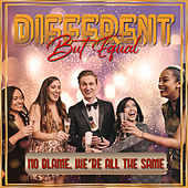 Different But Equal by Various Artists