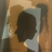 Pellter di Eve Goodman