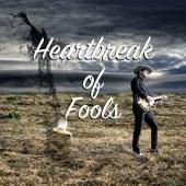 Heartbreak of Fools von Brad Brooks