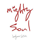 Mighty Soul von Langhorne Slim